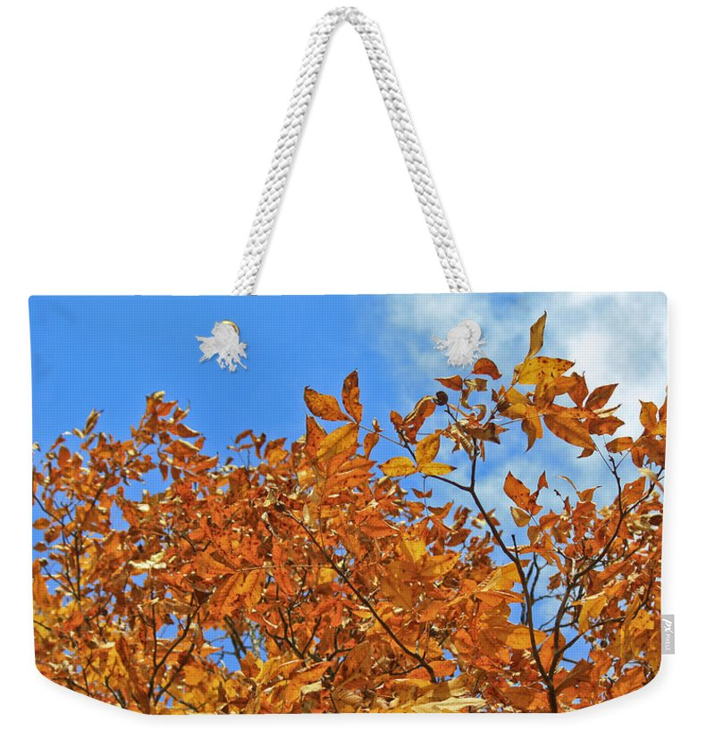 Fall Weekender Tote Bag featuring the photograph Blue Sky by Teresa Mucha