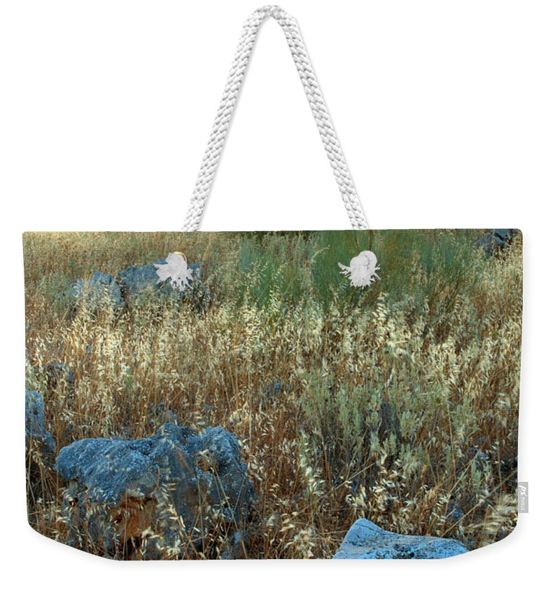 Iznajar Weekender Tote Bag featuring the photograph blue stones amongst the olive groves near Iznajar Andalucia Spain by Mal Bray