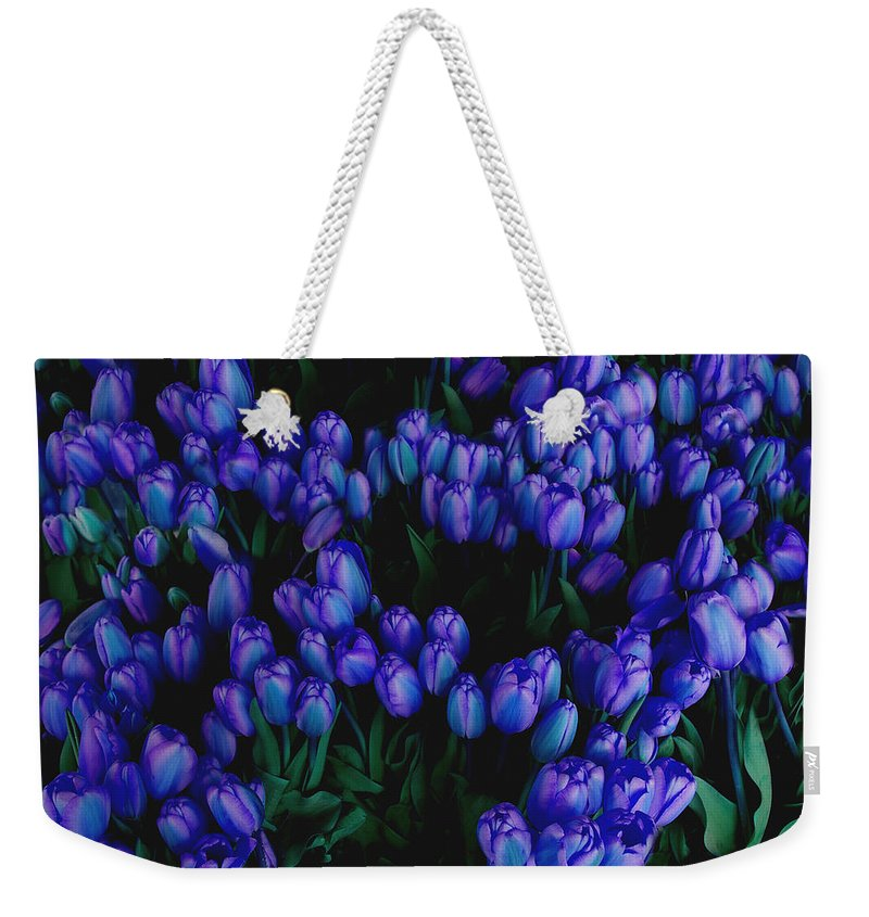 Blue Weekender Tote Bag featuring the photograph Blue Tulips by Tom Reynen