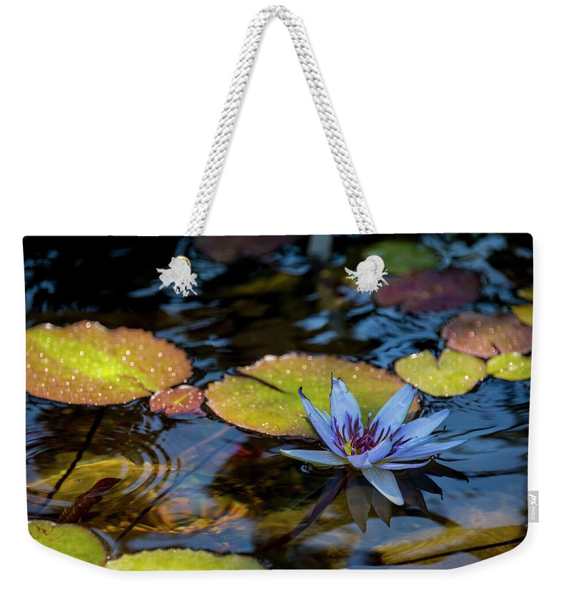 Blue Water Lily Flower Pond Weekender Tote Bag featuring the photograph Blue Water Lily Pond by Brian Harig