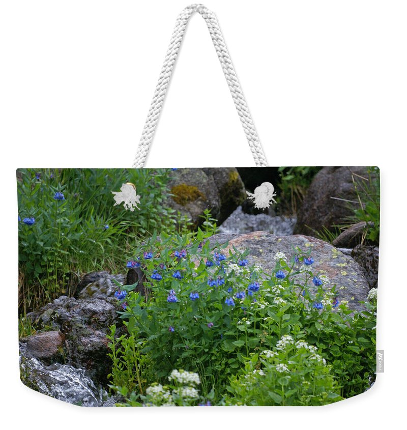 Wildflowers Weekender Tote Bag featuring the photograph Bluebells by Heather Coen