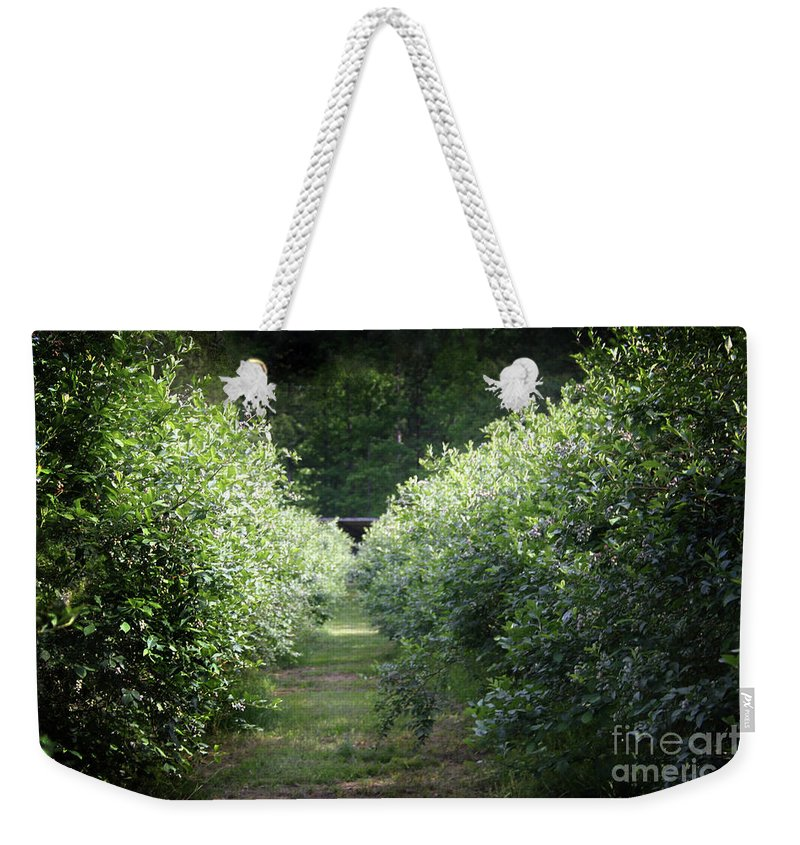 Blueberries Weekender Tote Bag featuring the photograph Blueberry Bushes by Kim Henderson