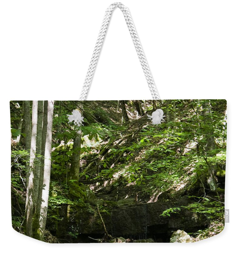 Bluestone Weekender Tote Bag featuring the photograph Bluestone State Park Mountain Stream West Virginia by Teresa Mucha