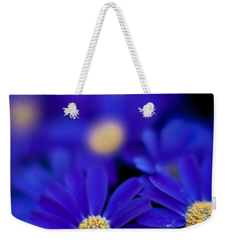 Flower Weekender Tote Bag featuring the photograph Bluey Gerbera by Mike Reid