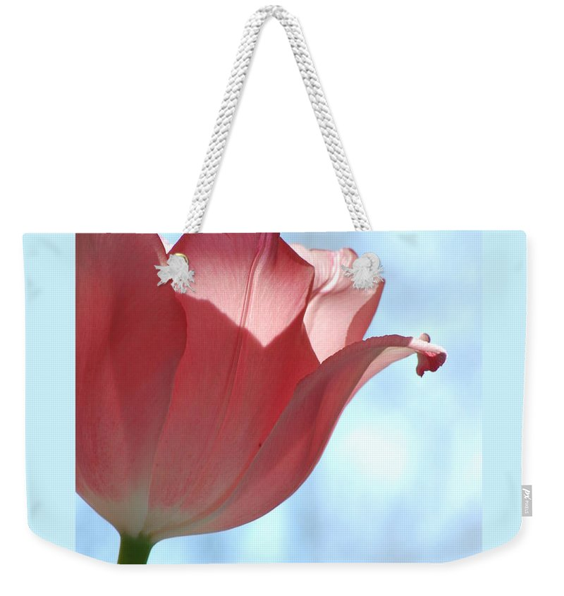 Tulip Weekender Tote Bag featuring the photograph Blush by Michelle Hastings