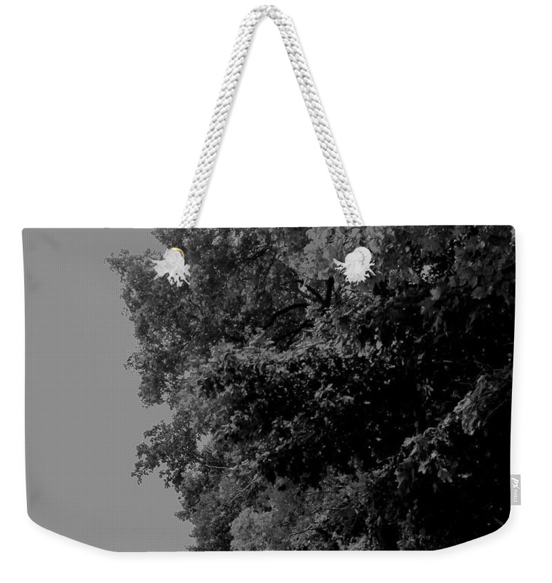Black And White Weekender Tote Bag featuring the photograph Boardwalk by Ian MacDonald