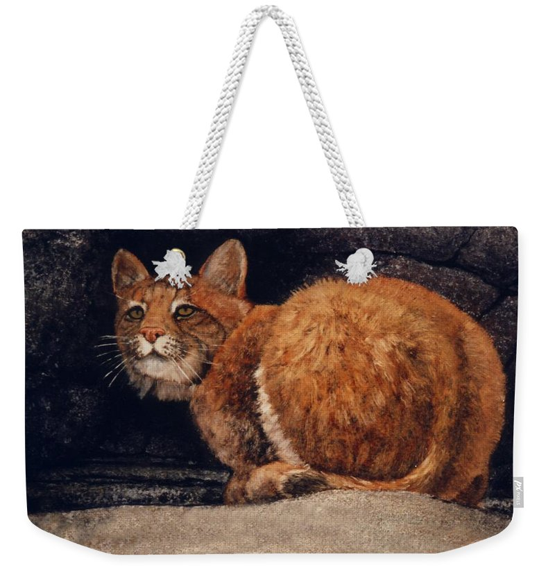 Wildlife Weekender Tote Bag featuring the painting Bobcat On Ledge by Frank Wilson