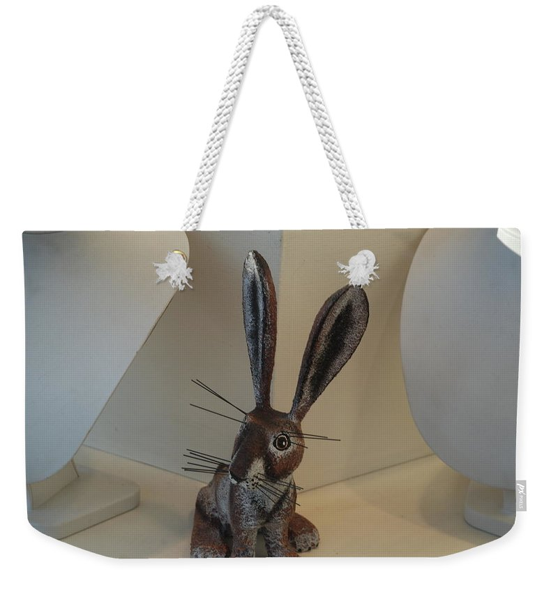 Rabbit Weekender Tote Bag featuring the photograph Boink Rabbit by Rob Hans