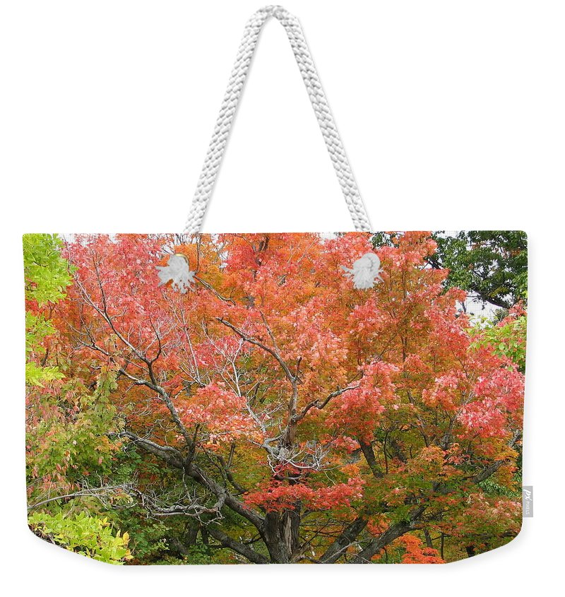 Fall Weekender Tote Bag featuring the photograph Bonfire by Kelly Mezzapelle