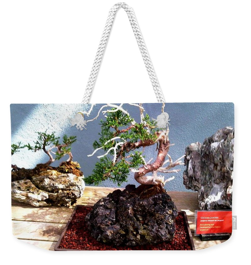 Bonsai Photo Weekender Tote Bag featuring the photograph Bonsai Tree by Lord Frederick Lyle Morris