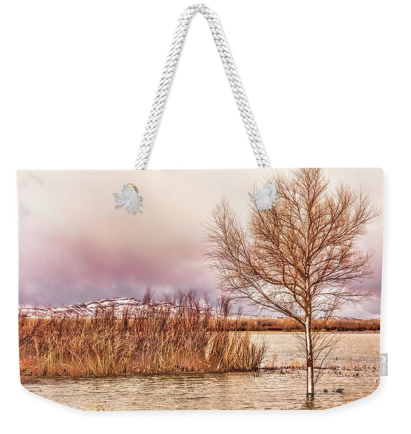 Bosque Del Apache Weekender Tote Bag featuring the photograph Bosque Winter II by Diana Powell