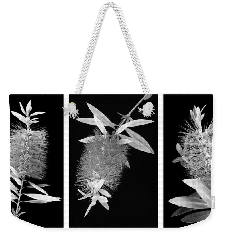 Bottlebrush Weekender Tote Bag featuring the photograph Bottlebrush Trio by Kelley King