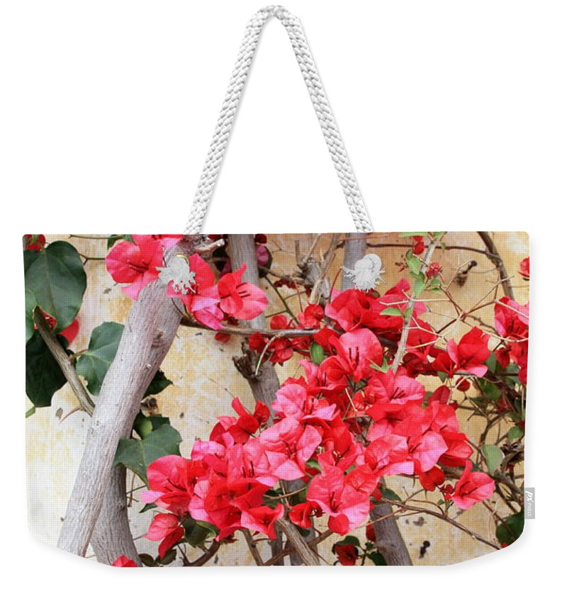 Bougainvilla Weekender Tote Bag featuring the photograph Bougainvillea by Carol Groenen