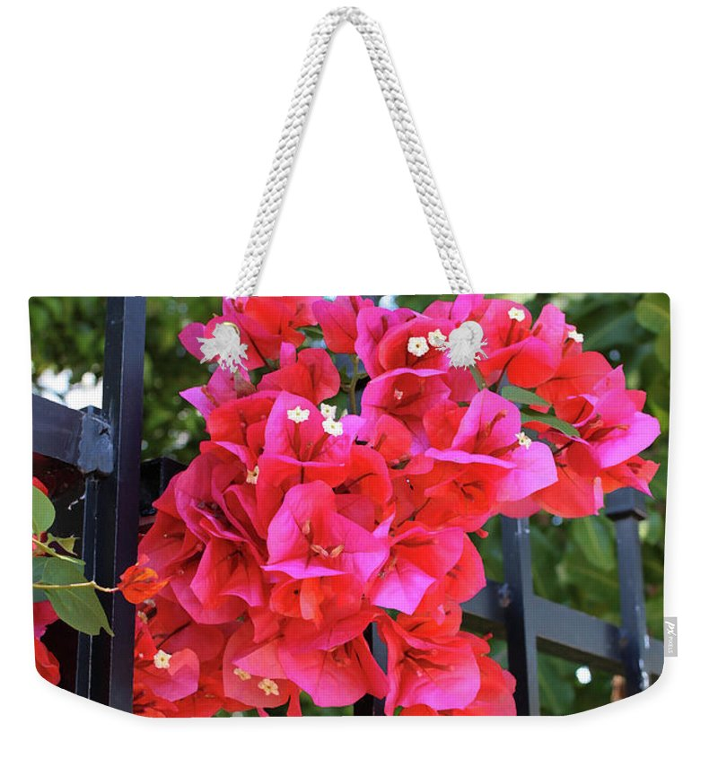 Bougainvillea Weekender Tote Bag featuring the photograph Bougainvillea On Southern Fence by Carol Groenen