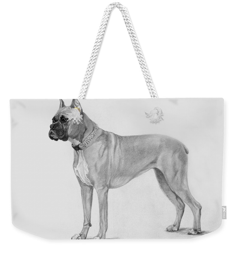 Dog Weekender Tote Bag featuring the drawing Boxer At Attention by Phyllis Tarlow