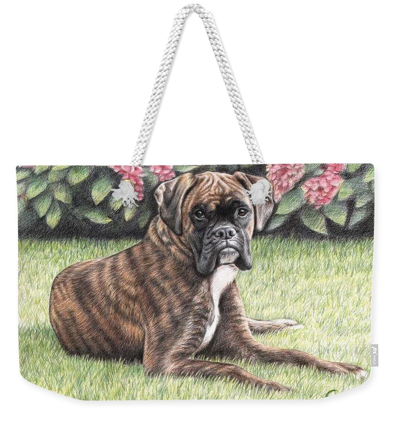 Dog Weekender Tote Bag featuring the drawing Boxer Girl by Nicole Zeug