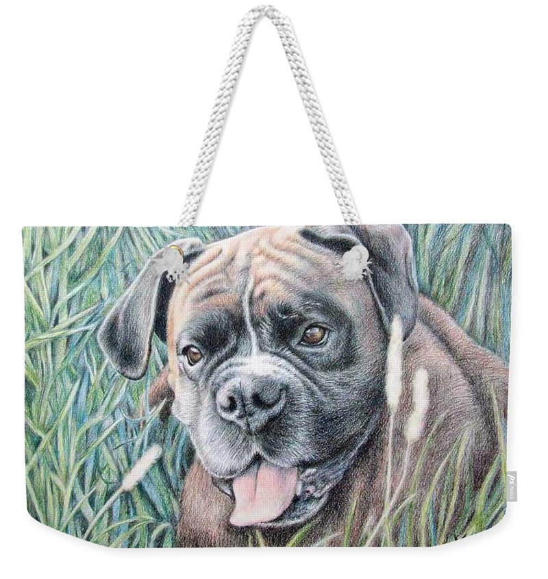 Dog Weekender Tote Bag featuring the drawing Boxer Yosi by Nicole Zeug