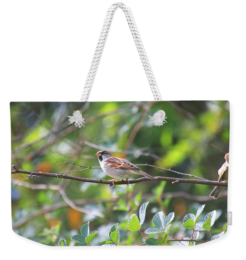 Weekender Tote Bag featuring the photograph Branch Visitor by Tony Umana