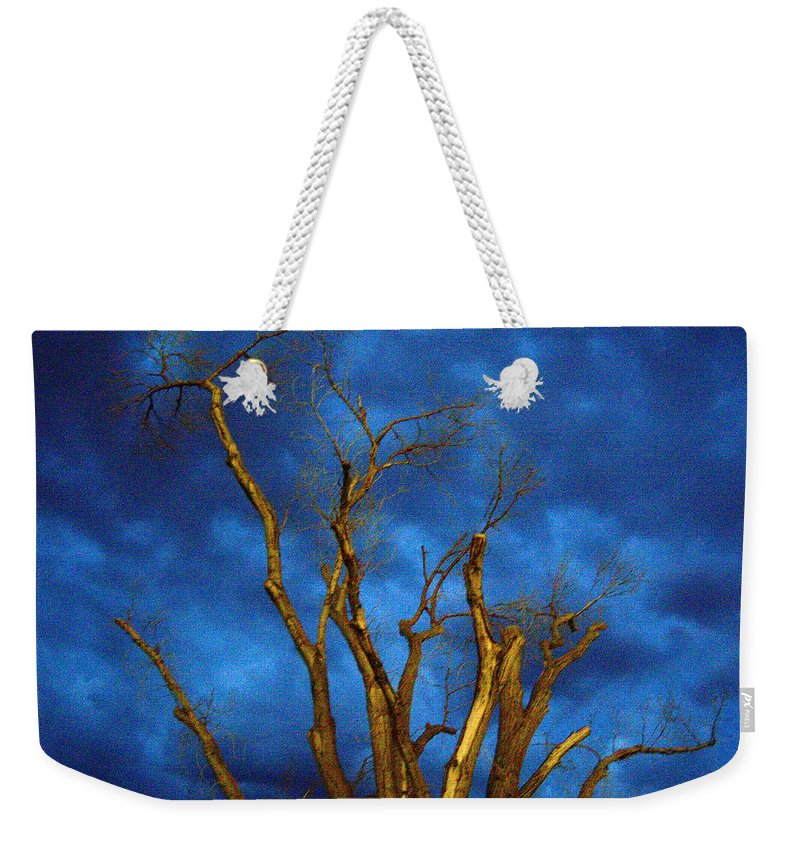 Blue Weekender Tote Bag featuring the photograph Branches Against Night Sky H by Heather Kirk