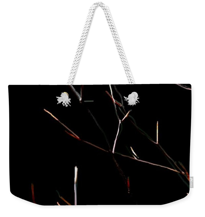 Weekender Tote Bag featuring the digital art Branches in the dark by David Lane