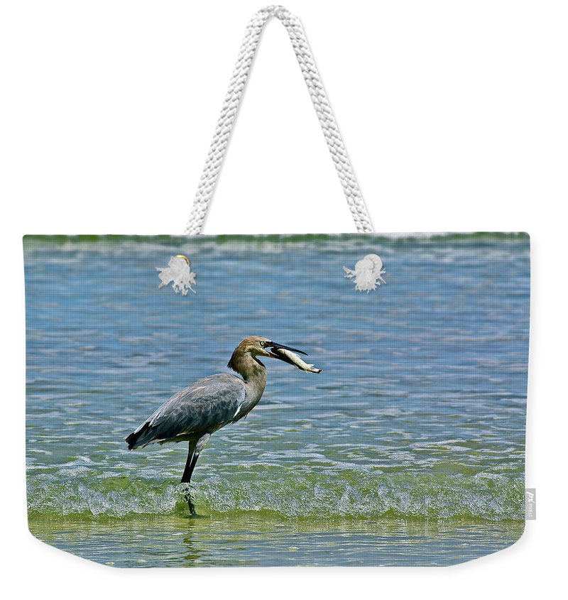 Birds Weekender Tote Bag featuring the photograph Breakfast by Diana Hatcher