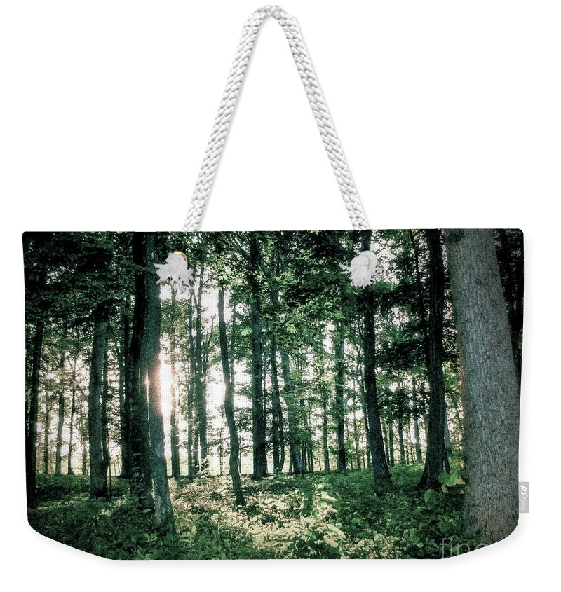 Forest Weekender Tote Bag featuring the photograph Breaking Through by Todd A Blanchard