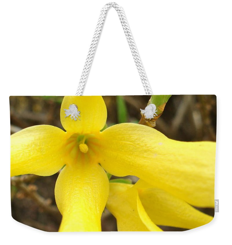 Flowers Weekender Tote Bag featuring the photograph Breakout In Yellow 1 by Nelson F Martinez