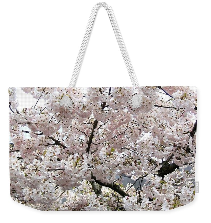 Bricks And Blossoms Weekender Tote Bag featuring the photograph Bricks And Blossoms by Will Borden
