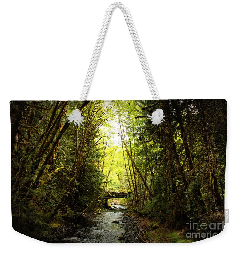 Rainforest Weekender Tote Bag featuring the photograph Bridge In The Rainforest by Carol Groenen