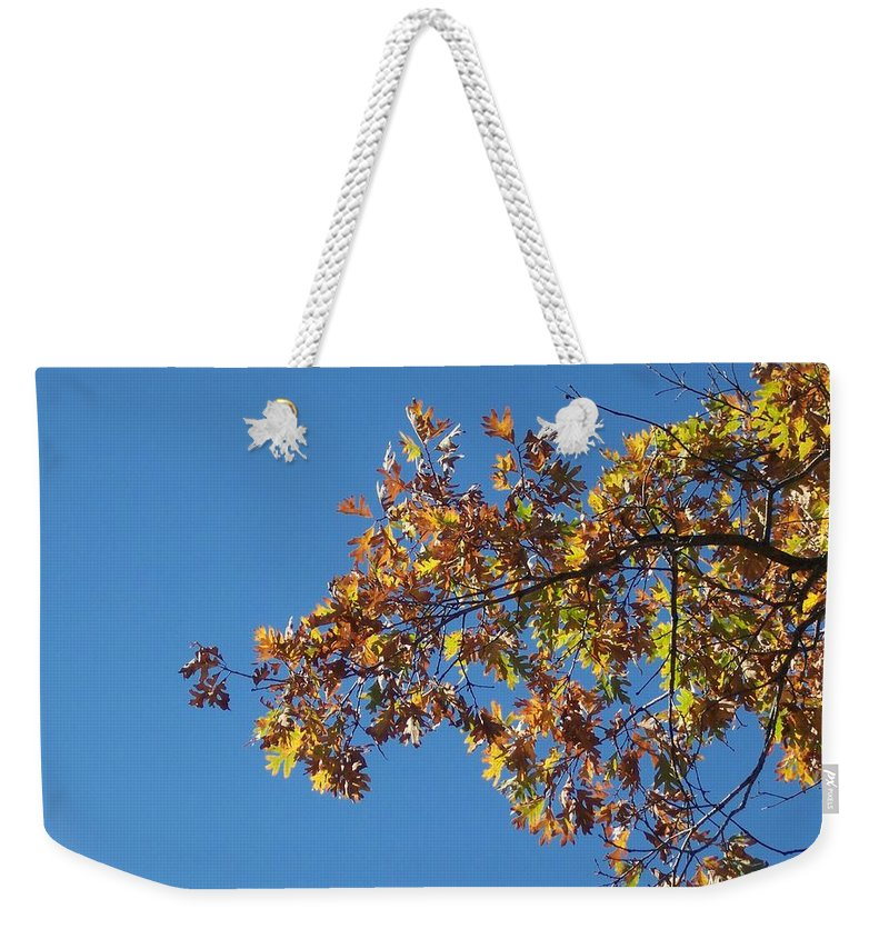 Branch Weekender Tote Bag featuring the photograph Bright Autumn Branch by Michelle Miron-Rebbe