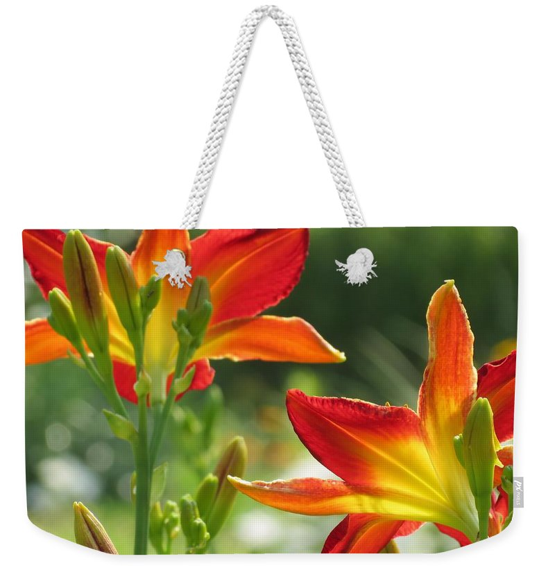 Ruby Spider Daylily Weekender Tote Bag featuring the photograph Bright Backs - Daylilies by MTBobbins Photography