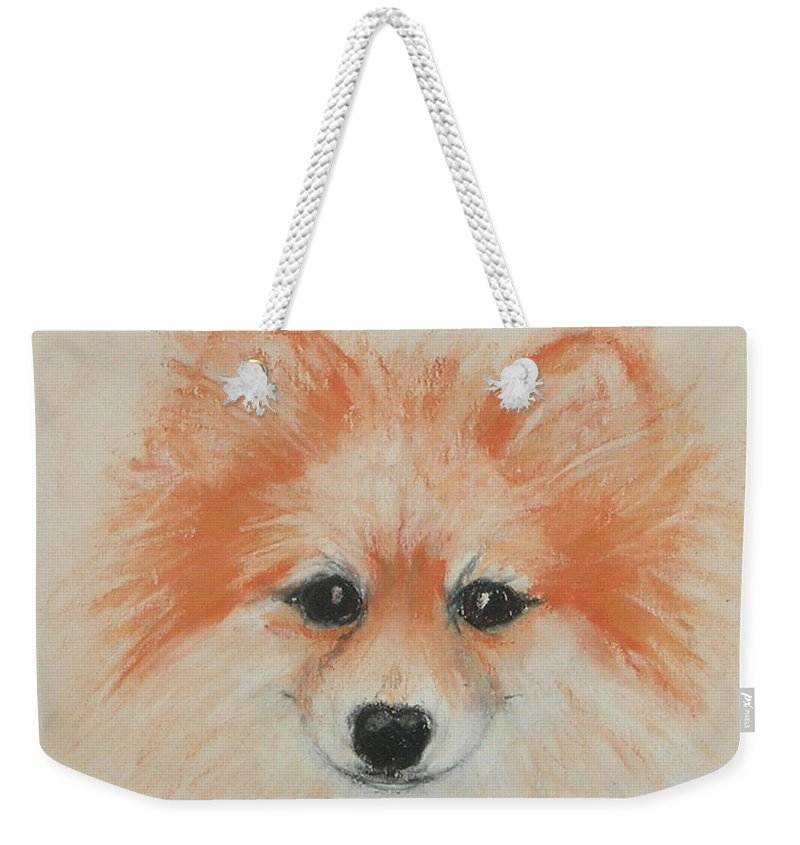 Pomeranian Weekender Tote Bag featuring the drawing Bright Eyes by Cori Solomon