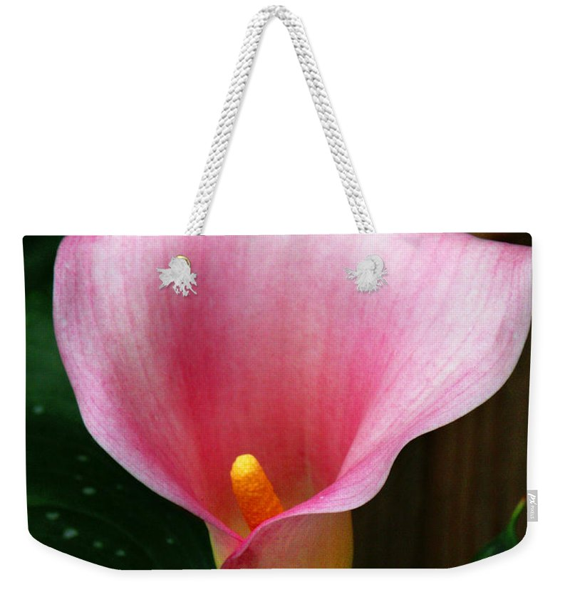 Bright Pink Weekender Tote Bag featuring the photograph Bright Pink Calla by Marilyn Hunt
