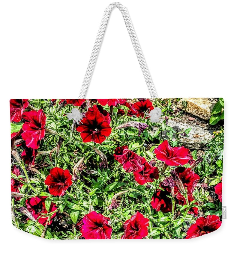 Flowers Weekender Tote Bag featuring the photograph Bright Red by Paul Kercher