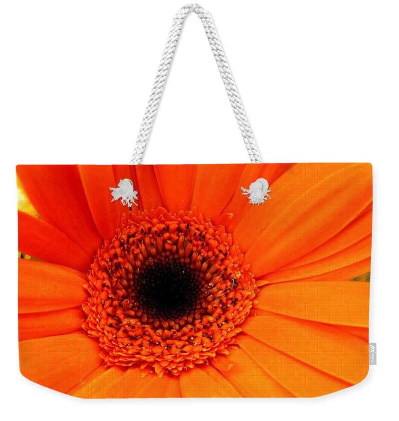 Flower Weekender Tote Bag featuring the photograph Bright Red by Rhonda Barrett