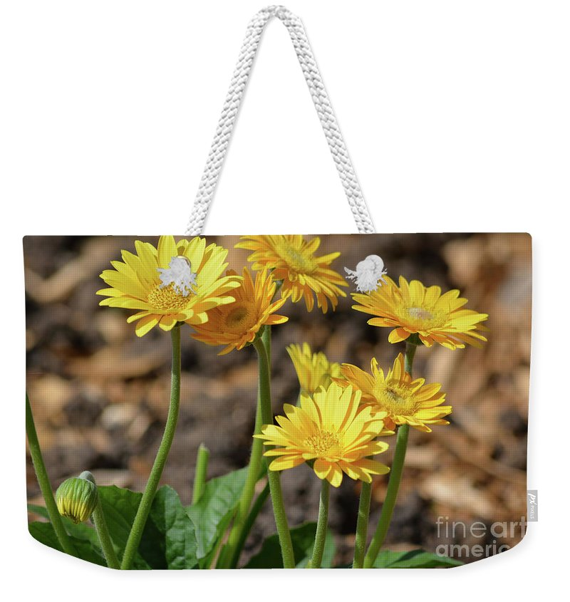 Bright Yellow Flowers Weekender Tote Bag featuring the photograph Bright Yellow Flowers by Ruth Housley