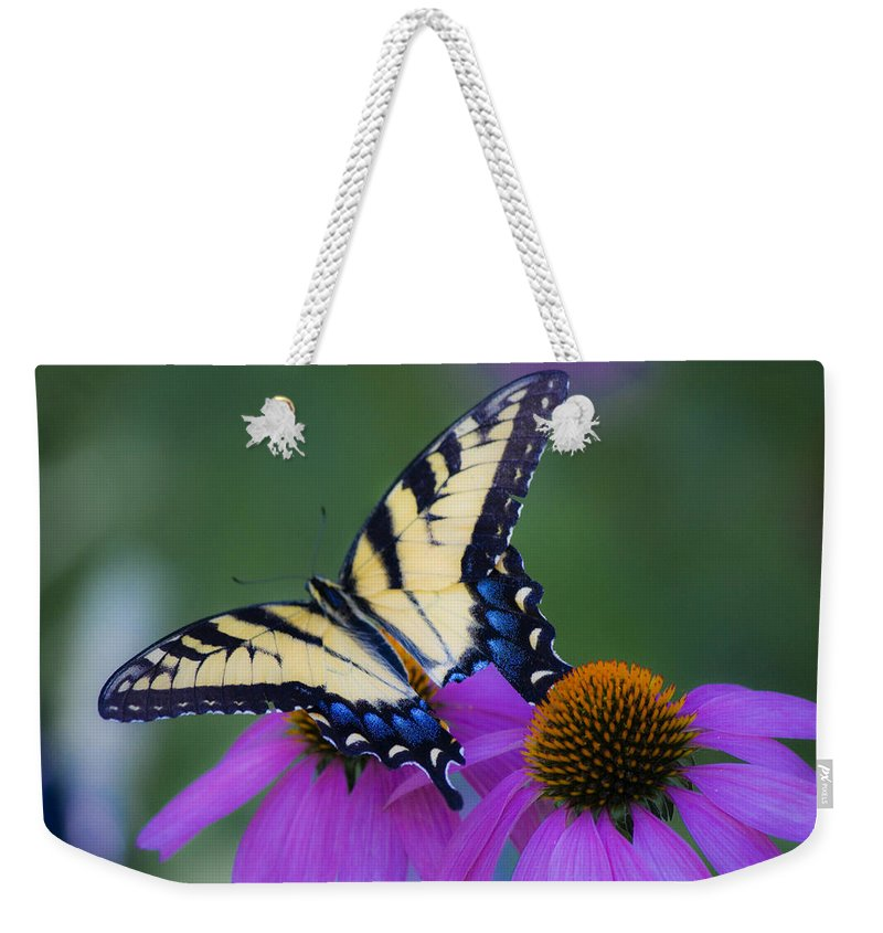 Photographs Weekender Tote Bag featuring the photograph Brilliant And Broke by Teresa Mucha