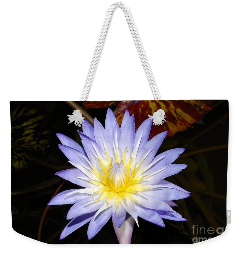 Lily Weekender Tote Bag featuring the photograph Brilliant Beauty by David Lee Thompson