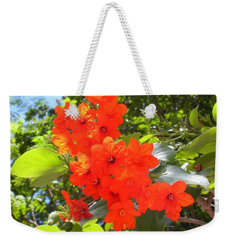 Flowers Weekender Tote Bag featuring the photograph Brilliant Blossoms by Maria Bonnier-Perez