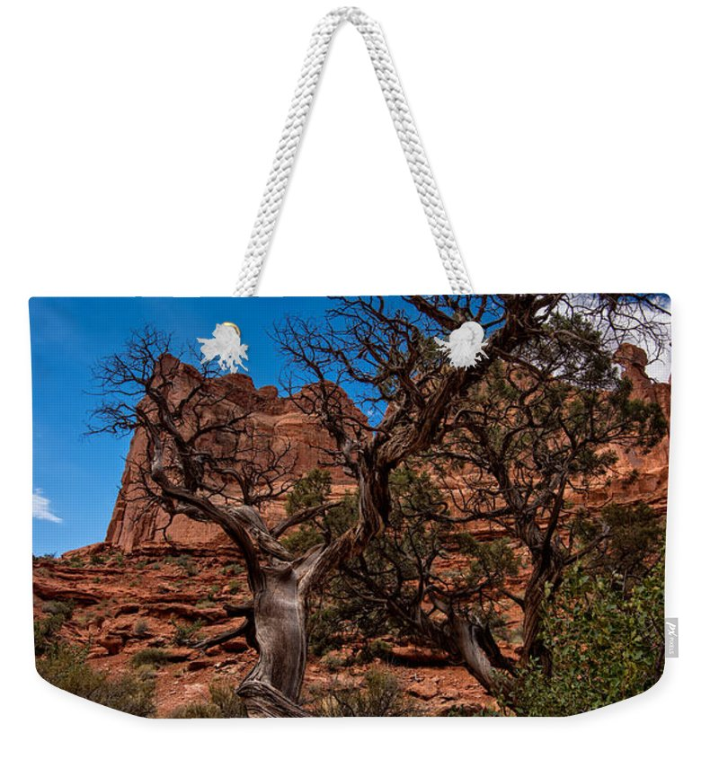 Arches National Park Weekender Tote Bag featuring the photograph Bristlecone On Park Avenue by Rick Berk