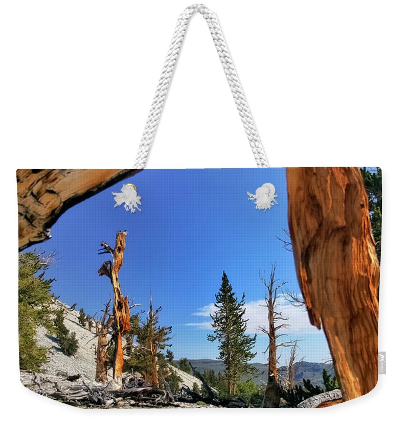 Bristlecone Pine Weekender Tote Bag featuring the photograph Bristlecone Pine Forest by Albert Seger