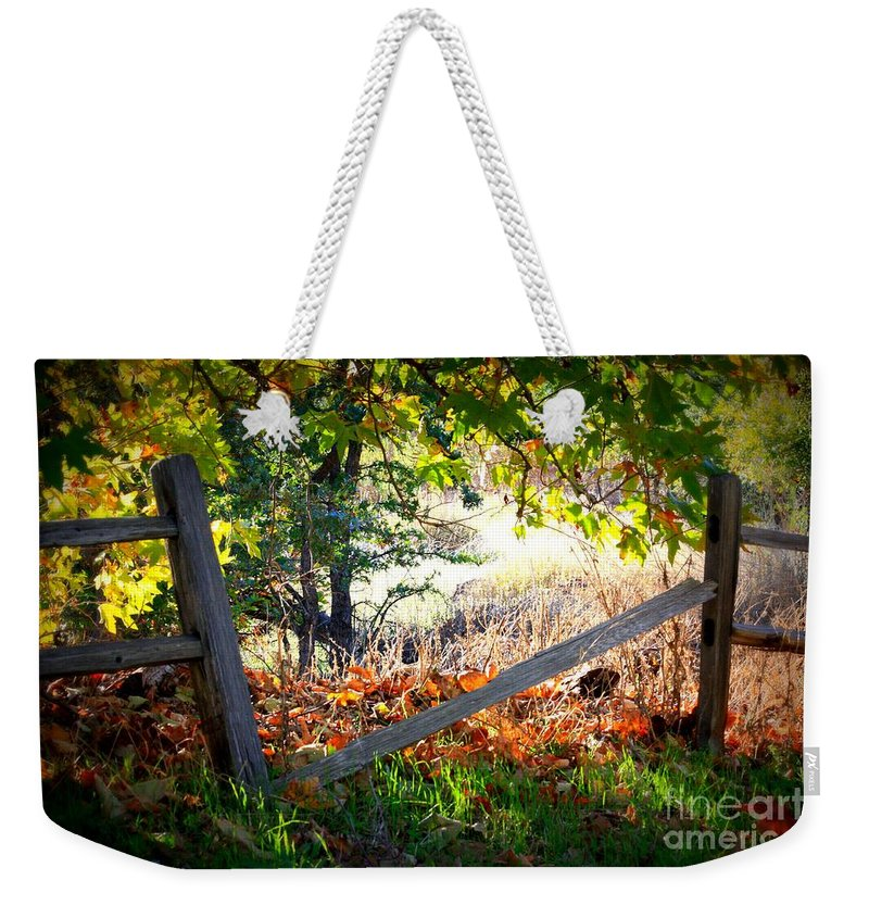 Autumn Weekender Tote Bag featuring the photograph Broken Fence In Sycamore Park by Carol Groenen