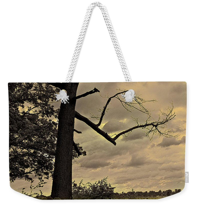 Tree Weekender Tote Bag featuring the photograph Broken Tree by Madeline Ellis