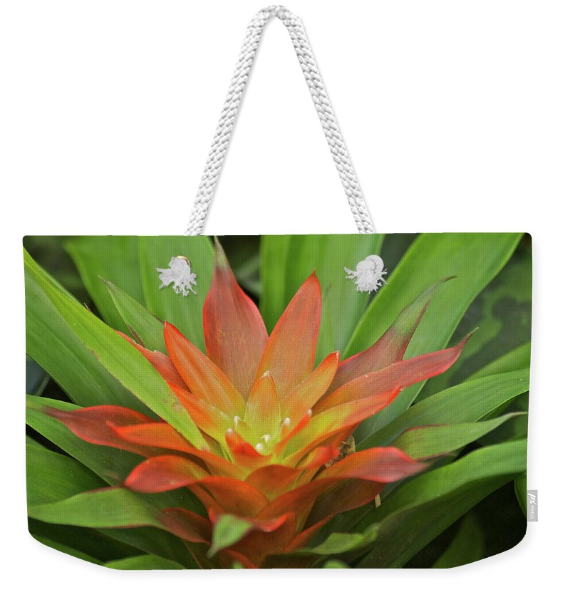 Bromeliad Weekender Tote Bag featuring the photograph Bromeliad by Michael Peychich