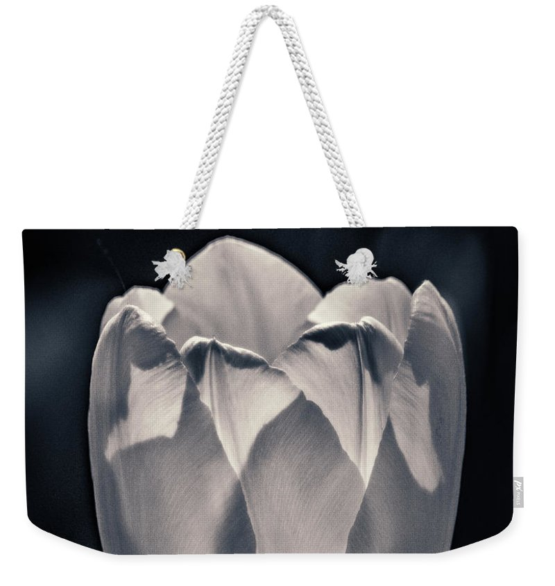 Flower Weekender Tote Bag featuring the photograph Brooding Virtue by Bill Pevlor