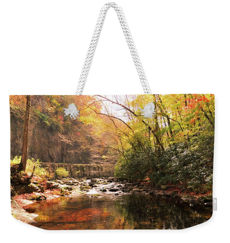 Brook Weekender Tote Bag featuring the photograph Brook Overlook by Michelle Rollins