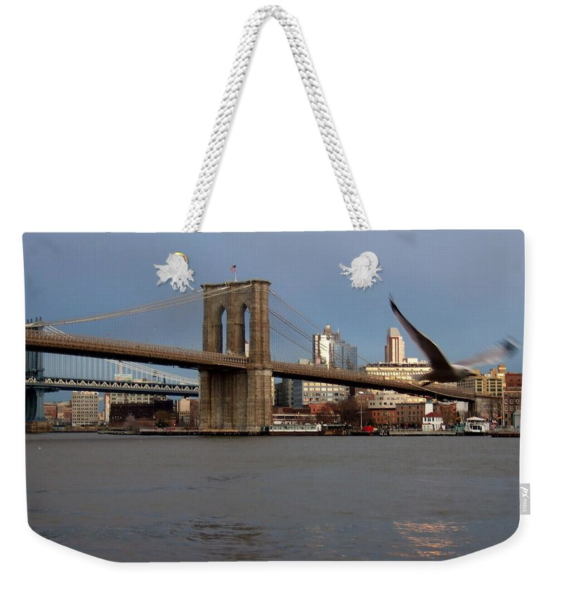 Brooklyn Bridge Weekender Tote Bag featuring the photograph Brooklyn Bridge And Bird In Flight by Anita Burgermeister