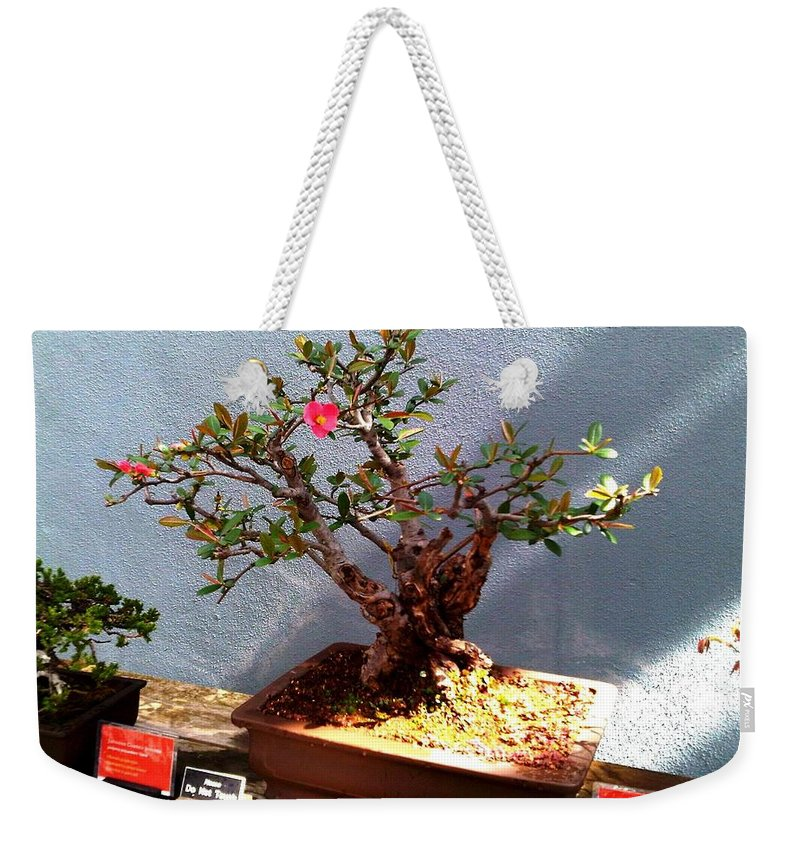 Photo Weekender Tote Bag featuring the photograph Brooklyn Garden 2017 by Lord Frederick Lyle Morris