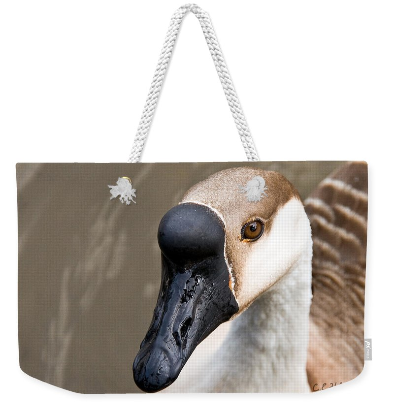 Chinese Brown Goose Weekender Tote Bag featuring the photograph Brown Eye by Christopher Holmes