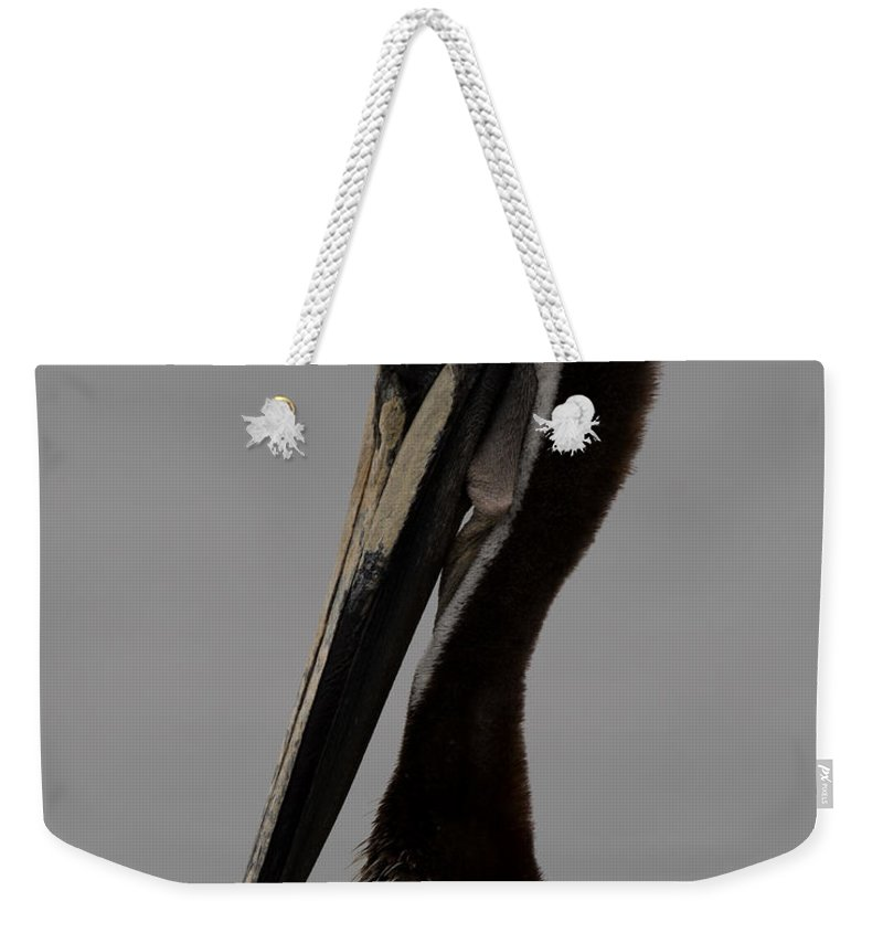 California Weekender Tote Bag featuring the photograph Brown Pelican 10 by Ernie Echols